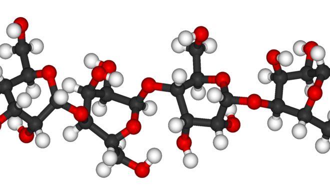 Model jednego z enzymów
