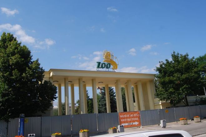 Wrocławskie ZOO to dziś wielki plac budowy, ale zwierzęta wciąż można podziwiać