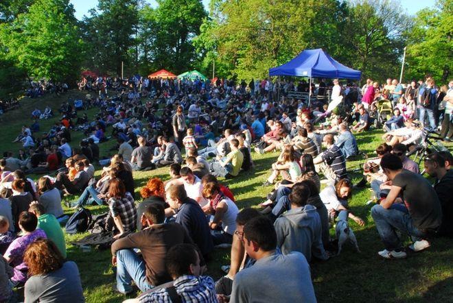 Festiwal gromadzi wielu amatorów złocistego trunku