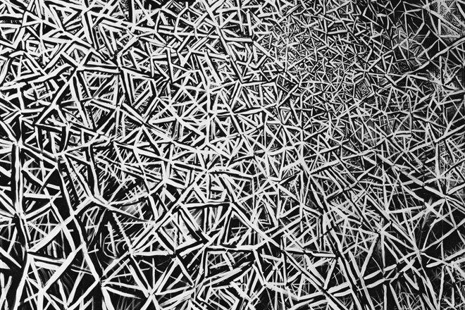 Wystawa Witolda Liszkowskiego