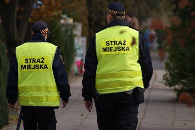 Funkcjonariusze mają patrolować wrocławskie nekropolie