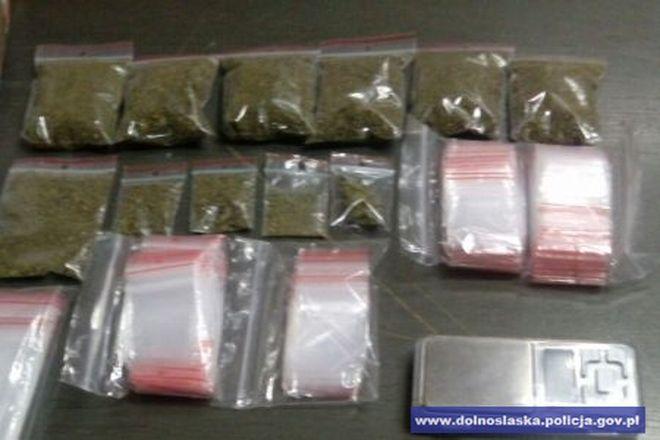 Wrocławska policja nie ustaje w tropieniu posiadaczy marihuany