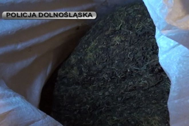 Tytoń był zapakowany w worki o łącznej wadze 100 kilogramów