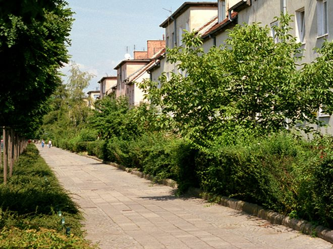 Chodnik na ulicy Spółdzielczej