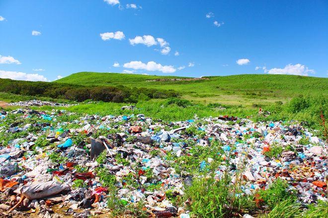 Dzikie wysypiska śmieci psują naturę