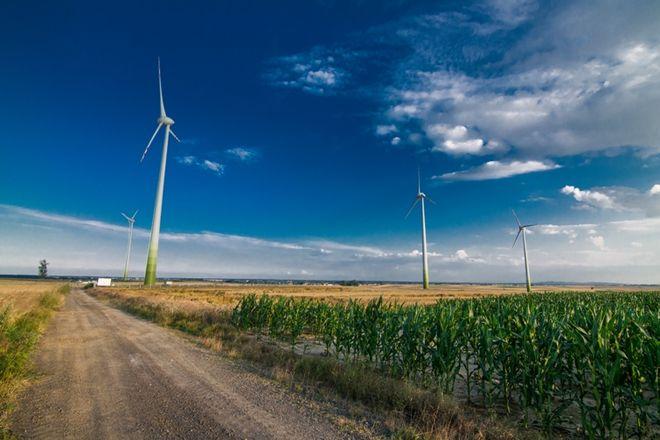 Turbiny wiatrowe dają energię