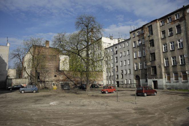 Tak obecnie wygląda podwórko przy ulicy Ptasiej.