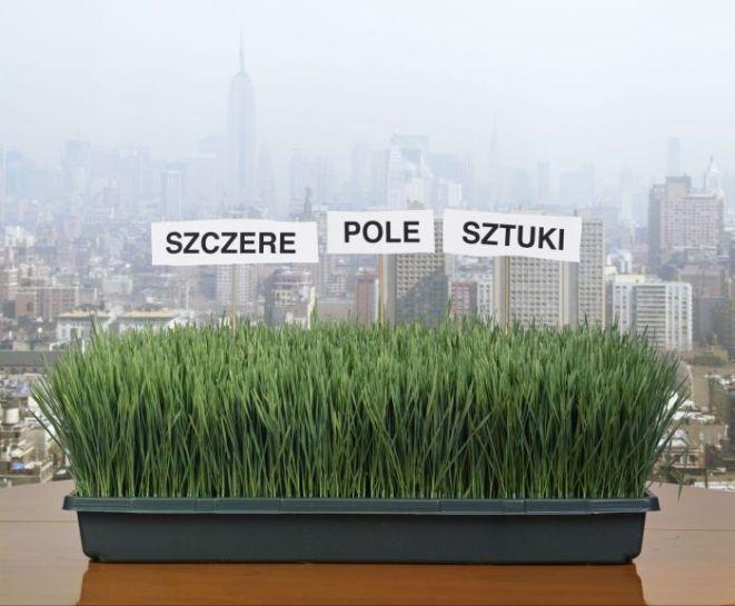 Leopold Duszka-Kołcz, ''Szczere Pole Sztuki'', Nowy Jork, 2005.