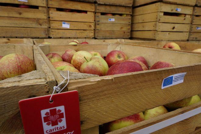Jabłka trafią do potrzbeujących wrocławian