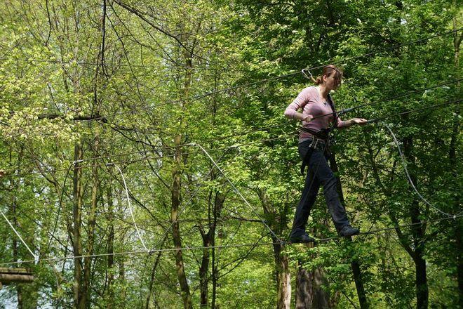 Park linowy to świetne miejsce rekreacji wśród zieleni
