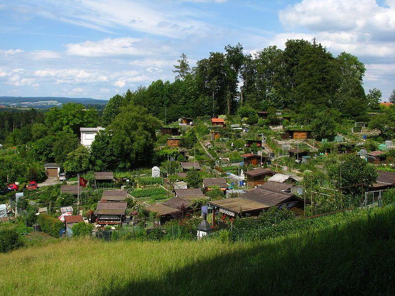 Trybunał Konstytucyjny zakwestionował 24 z 50 zapisów ustawy o rodzinnych ogródkach działkowych