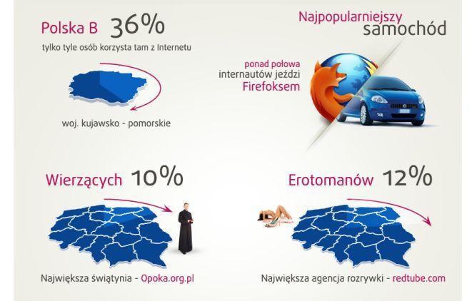Fragment infografiki wrocławskiej agencji dook.pl.
