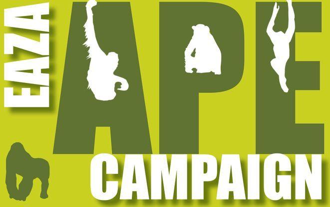 www.apecampaign.org