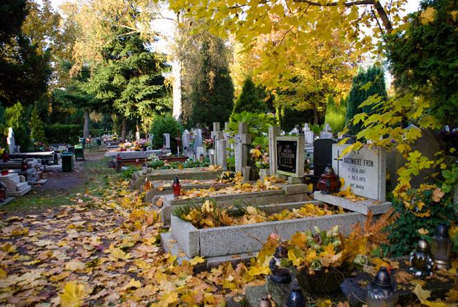 Zobacz jak najłatwiej dojechać autem na wrocławskie cmentarze, archiwum