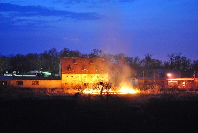 Pożar traw nieopodal ul.Centralnej. Tu strażacy interweniowali dwa razy w ciągu jednego dnia.