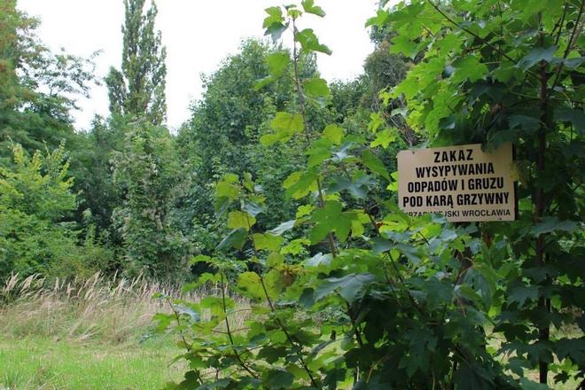 Mieszkańcy Tarnogaju chcą, by w miejscu nielegalnego wysypiska śmieci powstał park