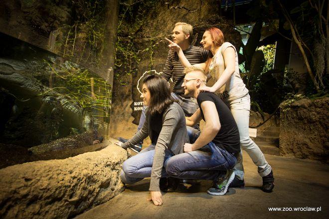 We wrocławskim zoo jest wiele do zobaczenia