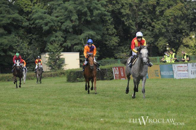 Konia, który uciekał udało się złapać dopiero w Żernikach Wrocławskich