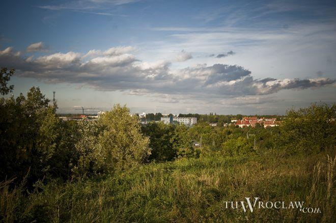 Widok ze Wzgórza Gajowego