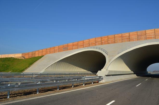 25-kilometrowy fragment drogi ekspresowej z Oleśnicy do Sycowa jest już prawie gotowy