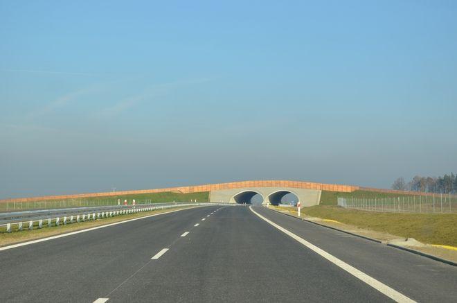 Na razie wrocławscy kierowcy cieszą się z nowego odcinka drogi S8 z Wrocławia do Sycowa, który skraca nieco podróż do Warszawy