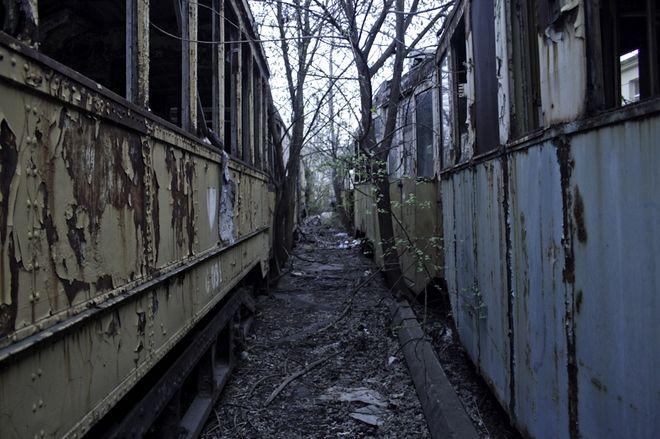 Zabytkowe tramwaje od dawna niszczeją na tyłach zajezdni przy ulicy Legnickiej