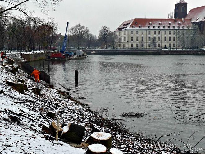 W ramach modernizacji bulwaru Dunikowskiego wycięto drzewa. Postawiono także nowy mur