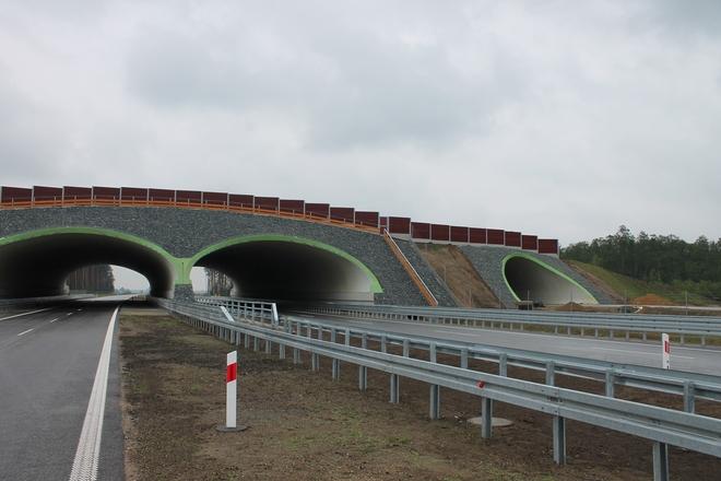 Dobiegły końca prace na budowie odcinka drogi ekspresowej S5 między Kaczkowem a Korzeńskiem