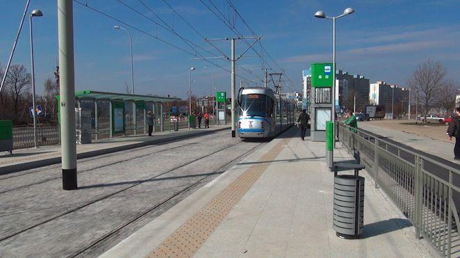 Nowe drzewa i krzewy pojawią się wzdłuż torowiska tramwajowego na ulicy Pilczyckiej