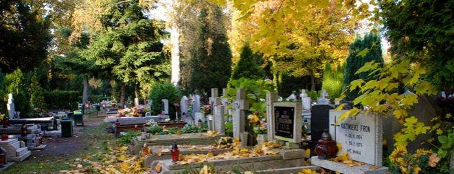1 listopada zmieni się organizacja ruchu wokół wrocławskich cmentarzy