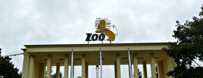 Urzędnicy zapewniają, że w tym roku podwyżek cen biletów do ZOO nie będzie